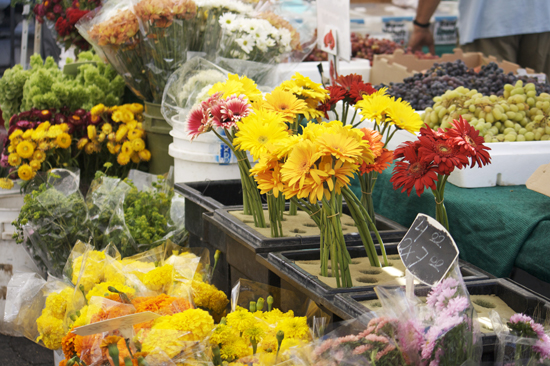 Flowers at Larchmont Farmers Market