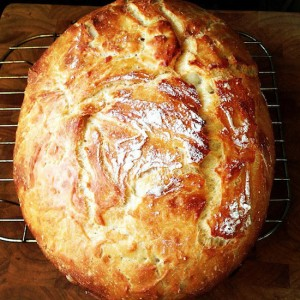Whole Wheat No Knead Bread